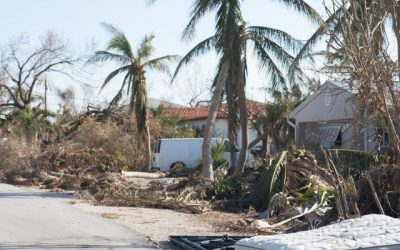Water Damage Repair Actions for Delray Beach Homes
