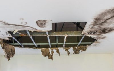 Water Damage Repair Actions For West Palm Beach Homes