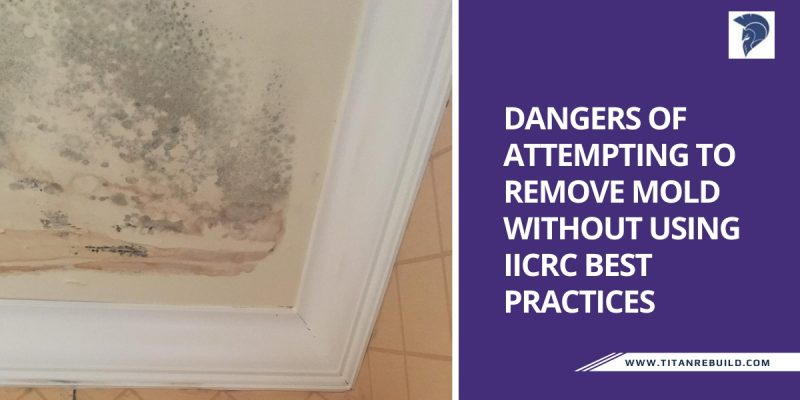 Dangers of Attempting to Remove Mold Without Using IICRC Best Practices