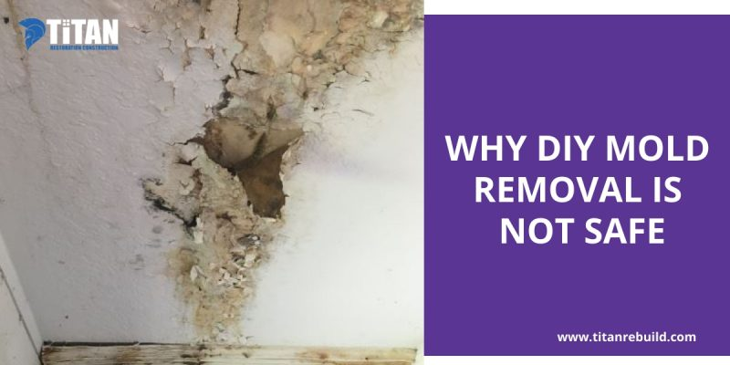 Mold in Ceiling House west palm beach