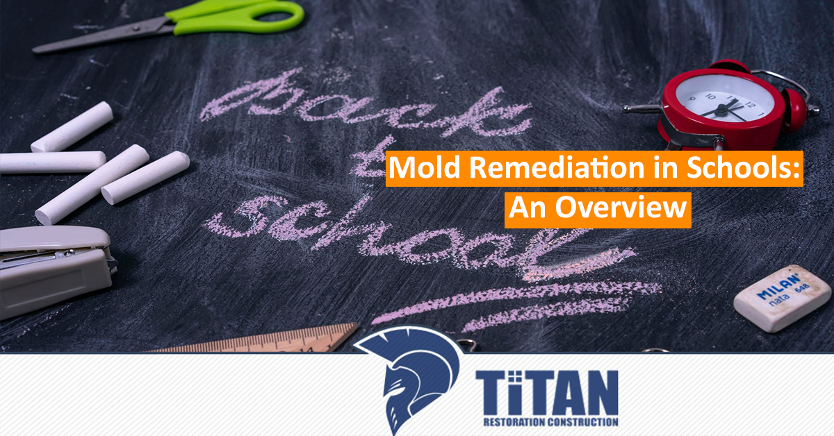 Mold remediation in schools: An overview
