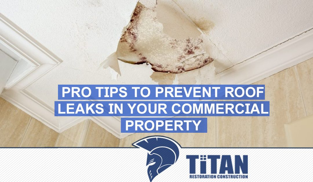 Pro Tips to Prevent Roof Leaks In Your Commercial Property