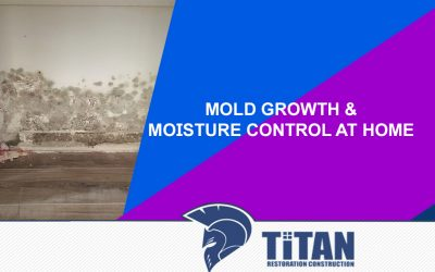 Mold growth and Moisture Control at Home