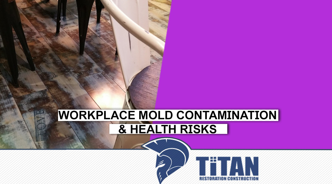 Workplace mold contamination & Health risks