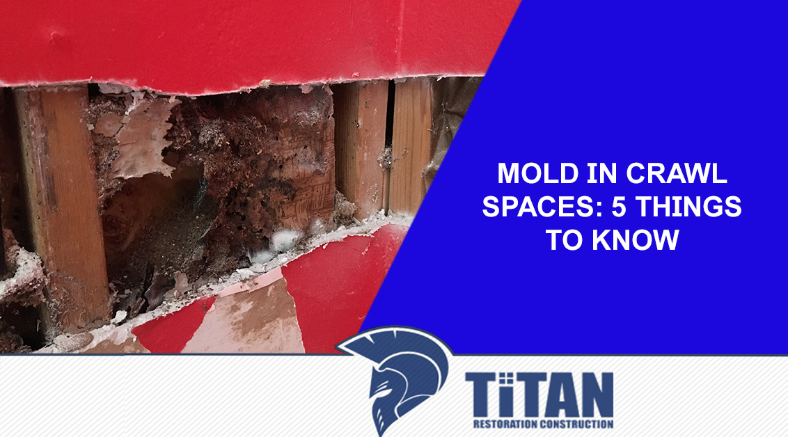 Mold In Crawl Spaces: 5 Things to Know