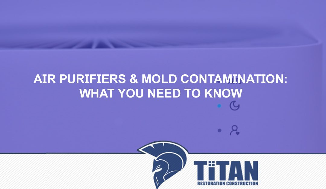 Air Purifiers & Mold Contamination: What You Need To Know