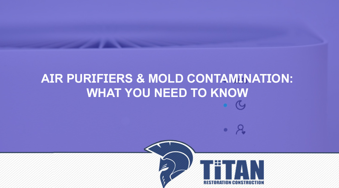 Air Purifiers & Mold Contamination What You Need To Know