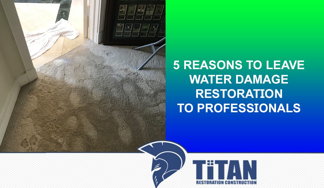 5 Reasons to Leave Water Damage Restoration to Professionals