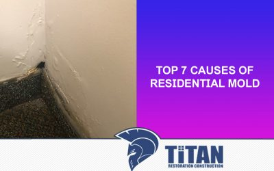 Top 7 Causes of Residential Mold