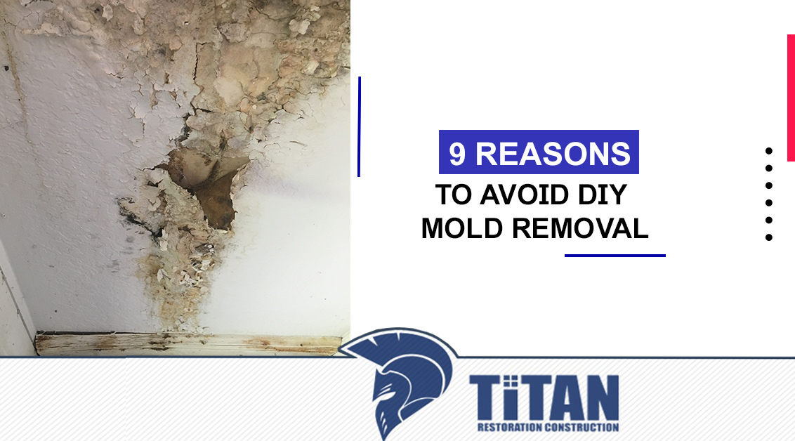 9 Reasons to Avoid DIY Mold Removal