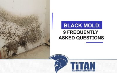 Black Mold: 9 Frequently Asked Questions
